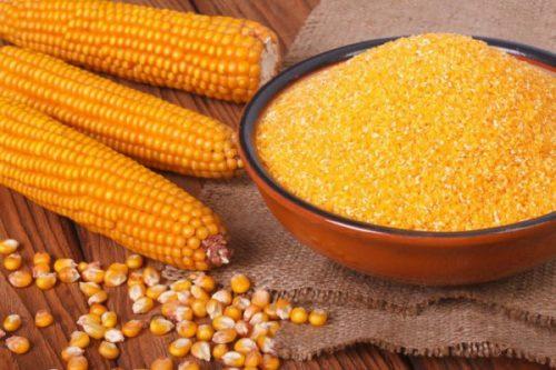 кукурузная каша польза и вред