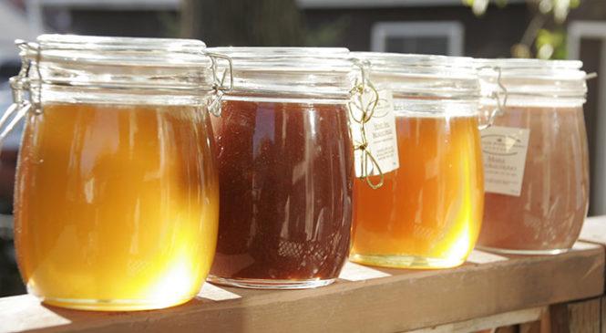 Простые правила, как правильно выбрать мед в магазине